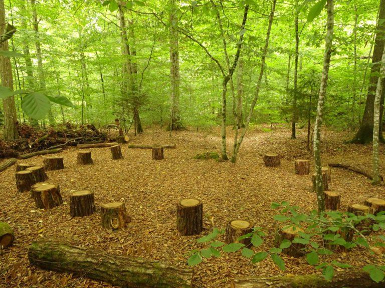 Wald fuer die Seele Kinderseele1