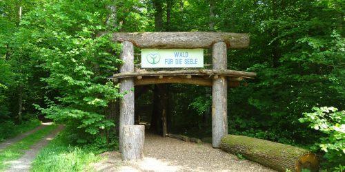 Wald für die Seele Eingang
